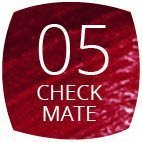 05 Check Mate