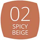 02 Spicy Beige